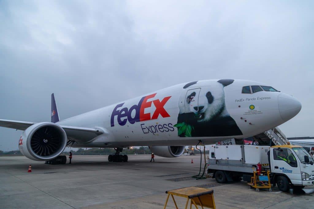 """เฟดเอ็กซ์ส่งลูกแพนด้ายักษ์ เป้ยเป้ย บินตรงกลับจีน ด้วยบริการ """"เฟดเอ็กซ์ แพนด้า เอ็กซ์เพรส"""""""